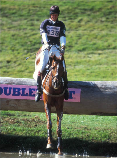 William Fox Pitt and Stunning