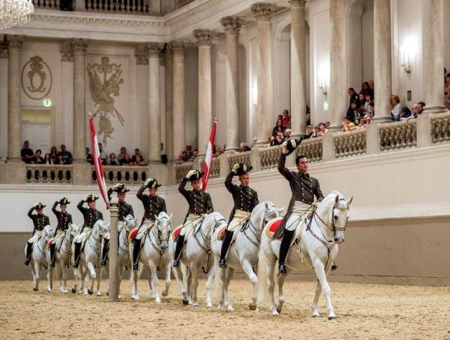 The Horses Of The Spanish Riding School