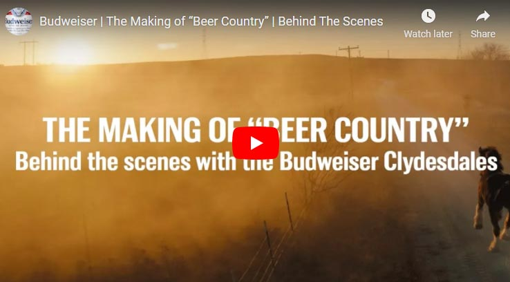 The Making of Beer Country - Behind The Scenes - Budweiser Clydesdales