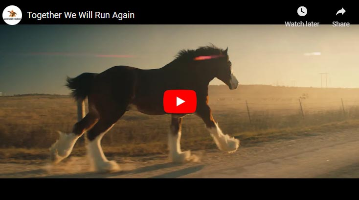 Together We Will Run Together - Anheuser-Busch