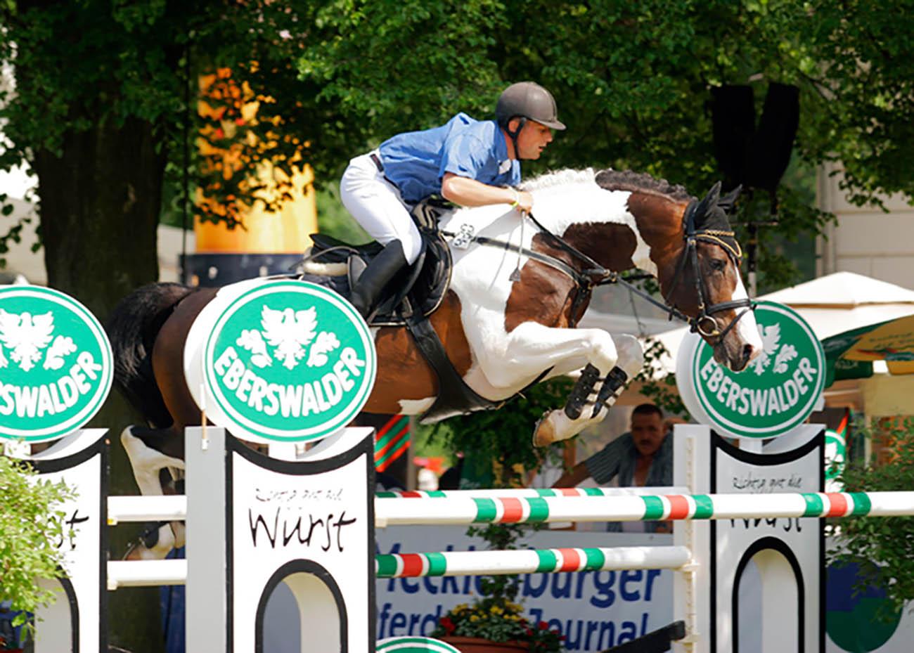 Universums Knock-Out (Nekoma x Le Champion) - Coloured Sport Horse
