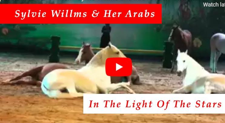 Sylvie Willms & Her Arabs