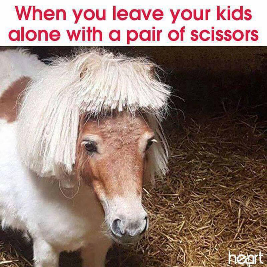 When you leave your kids alone with a pair of scissors