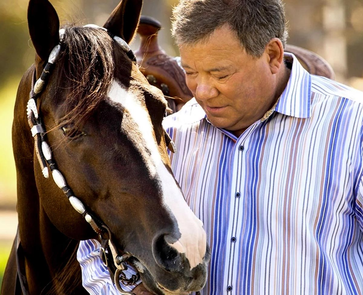 William Shatner - Horses