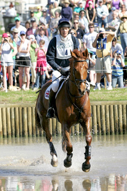 Event horse Navigator & William Fox Pitt