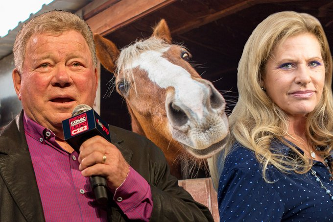 William Shatner Horses