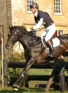 Eventing Stallion - All That Jazz & William Fox Pitt