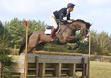 William Fox Pitt - Corofin Flyer
