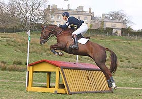 Eventer William Fox Pitt - Lady Voltaire
