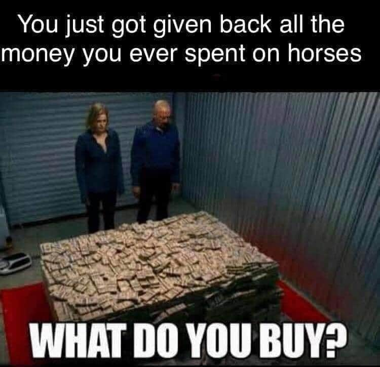 You Just Got Given Back All The Money You Ever Spend On Horses - What Do You Buy?