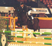 Horse Of The Year Show - Niagra B