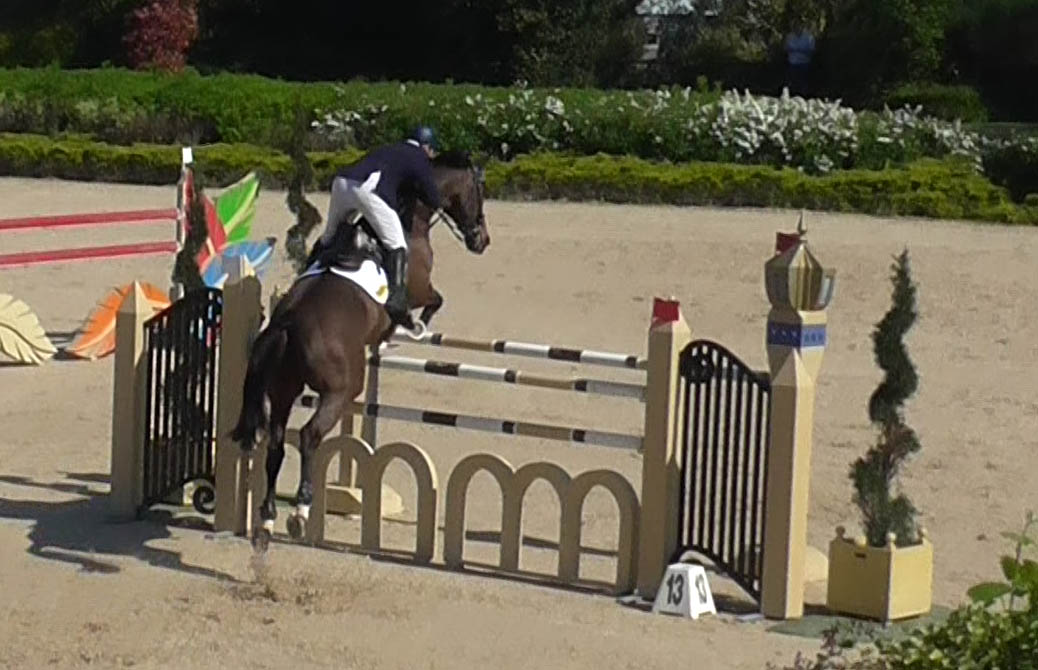 Show Jumping Riders